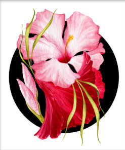 Flower Power – Tropical Pink