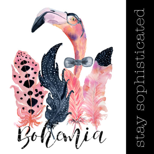 Bohemian Flamingo – Sir Alastaire