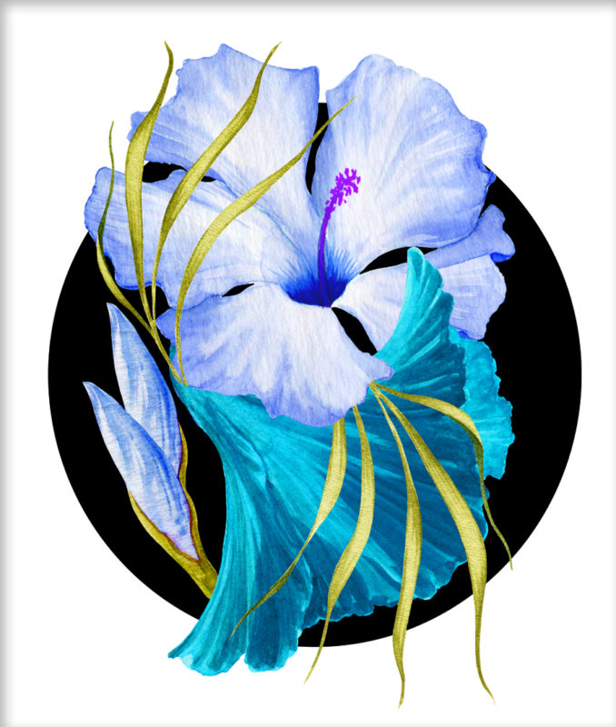 Flower Power – Tropical Blue
