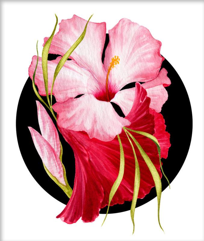 Flower Power – Tropical Pink